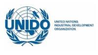 logo-UNIDO