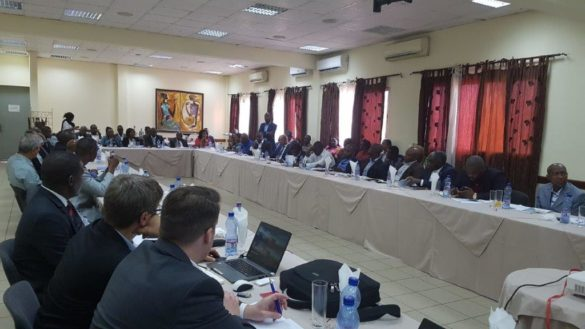 unido_workshop congo1