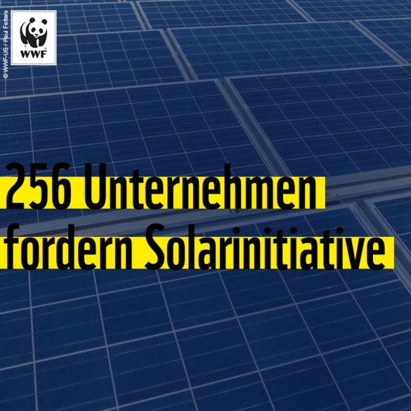 Foto zu Solarapell